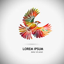 A Multi-colored Flying Decorative Bird. Vector Illustration