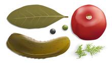 Pickled Vegetables Vector Image. Gherkin, Dill Pepper Tomato Bay Leaf. 3d Vector Realistic Vegetables