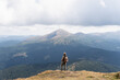 Woman hiking with backpack and trekking poles. Nature tourism in Ukrainian Carpathian mountains. Hoverla mountain peak in the background.