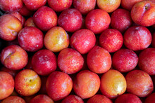 Closeup Of Heap Of European Plum At The Wholesale Market Stall