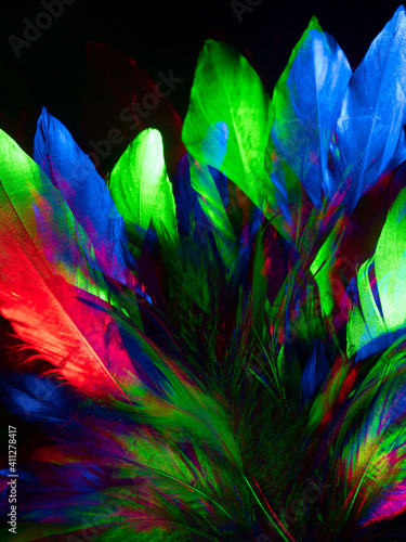 Colorful feathers abstract background