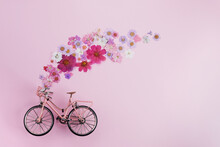 Flowers Fly Out From Pink Bicycle Bascet On Pink Background. Romanitic Concept For Valentine Day, Women Or Mother Day.