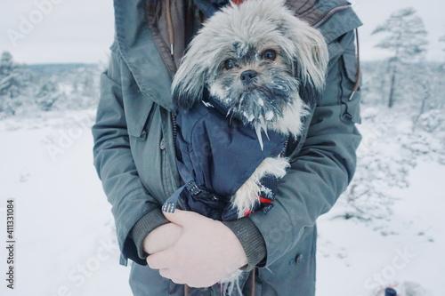 Fototapeta Man Holdingfreezing Cold obraz