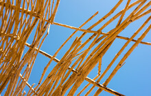 Yellow Twigs From A Beach Umbrella Against The Blue Sky