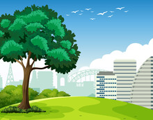 Park Outdoor Scene With A Tree And Many Building In Background