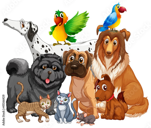 Group of pet on white background #411366439