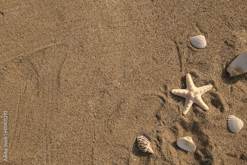 Photo Starfish, shells and conchs on beach