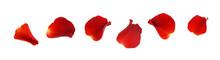Set Of Red Rose Petals