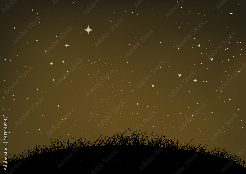 grass and ground starry night sky