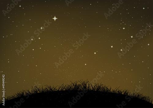 Fototapety, obrazy: grass and ground starry night sky