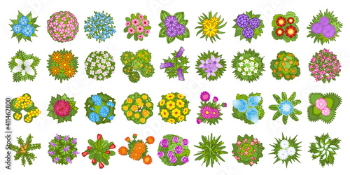 Vector set. Flowers. Top view. Collection of different flowers for architectural and landscape design. (View from above) Nature green spaces.