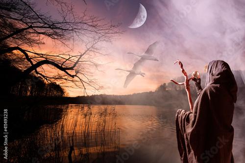 Fotografering Eine fantasievolle, mystische Landschaft mit einem See, fliegenden Schwänen und einem großen Mond