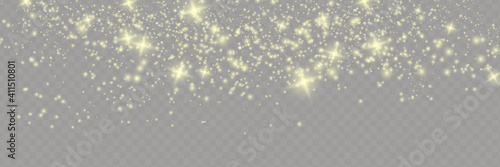 Obraz Sparkling magical dust particles . The dust sparks and golden stars shine with special light. - fototapety do salonu