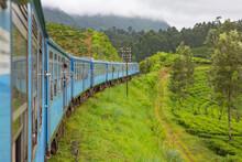 Blue Train Passing Through Tea Plantations In Highlands Of Sri Lanka.