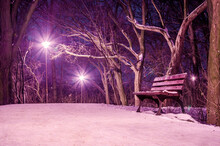 A Beautiful View Of A Bench In A Park Covered With Snow Surrounded By Leafless Trees