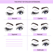 Eyelash Extension Guide. Direction Schemes. Tips And Tricks For Eyelash Extension. Infographic Vector Illustration.