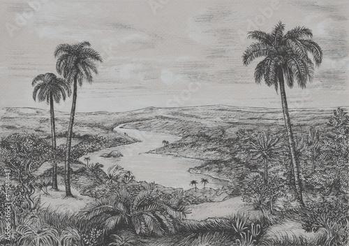 Fototapeta Dżungla obraz