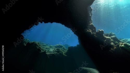 Obraz Underwater scenery with sunlight and sunbeams - fototapety do salonu