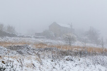 Snow Covers The Landscape