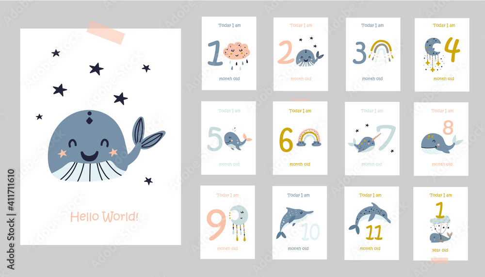 Fototapeta Monthly baby cards with cute whales.