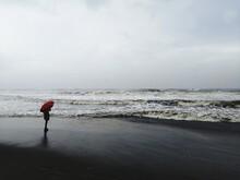 Monsoon Has Finally Arrived In Kerala