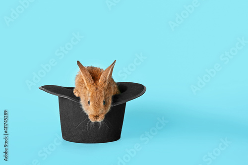Obraz na plátně Magician hat with cute rabbit on color background