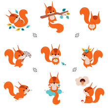Cute Red Squirrel Dancing And Swinging On Tree Branch Vector Set