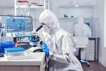Team Of Scientist Working On Developing A Vaccine For Coronavirus In Laboratory. Chemist Researcher During Global Pandemic With Covid-19 Checking Sample In Biochemistry Lab