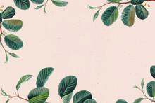 Green Leaf Frame Floral Background