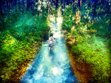 Girl In A Summer Dress Standing In Thermal Waters That Flow Through The Forest, Heviz, Hungary
