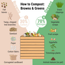 Infographic Of Garden Composting Bin With Scraps. What To Compost. Green And Brawn Ratio For Composting. Recycling Organic Waste. Sustainable Living Concept