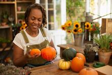 Female Florist Arranging Autumn Pumpkins In Shop
