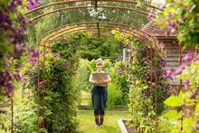 Portrait Woman With Basket Below Trellis With Purple Flowers In Garden