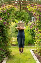 Portrait Woman Holding Large Basket Of Harvested Garden Vegetables