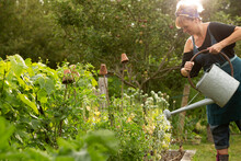 Woman Watering Plants With Watering Can In Summer Garden