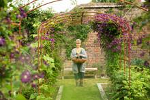 Portrait Woman With Basket Under Garden Trellis With Purple Flowers