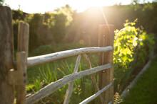 Wood Gate In Sunny Idyllic Summer Garden