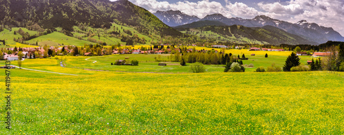 Fotografie, Obraz Scenic View Of Green Landscape And Mountains Against Sky