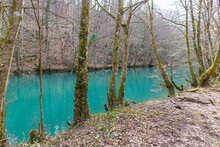 Blue And Green River Slunjcica Passing Through The Woods And The Treeline By The River Edge