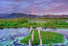 Lake Lebo, Taliwang, West Sumbawa Island, Indonesia