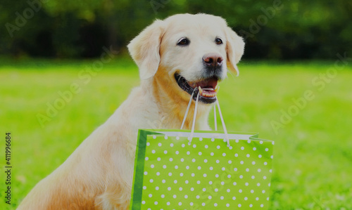 Photo Portrait of Golden Retriever dog holding a green shopping bag in the teeth outdo