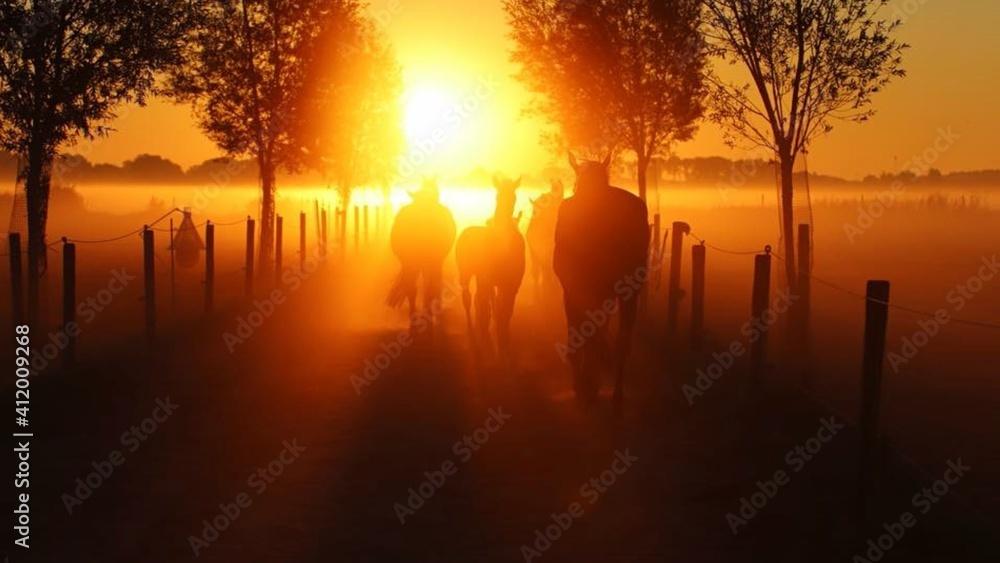 Fototapeta Silhouette Horses Walking On Field Against Orange Sky During Sunset