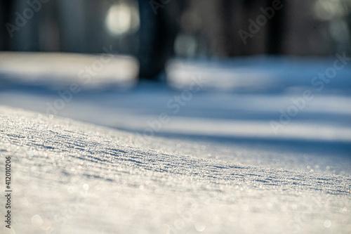 paisaje recien nevado y virgen en un día soleado