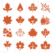 16 Pack Of Flowering Tree  Filled Web Icons Set