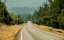 Carretera, Autopista, Paisaje, Cielo, Viajando, Asfaltar, Bosque, Naturaleza, Montagna, árbol, Campesina, Campestre, Camino, Azul, Montagna, Verde, Calle, Curva, árbol, Verano, Cerro, Viaje, Conductos