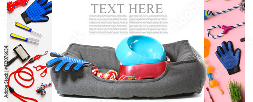 Canvas Print Collage of different pet accessories with space for text