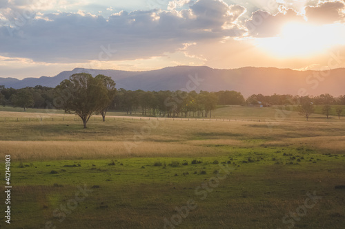 Golden summer sunset or sunrise light cast over a picturesque rural landscape in the Hunter Valley region, renowned wine country in NSW, Australia.