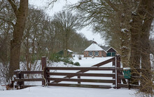Winter At The Es Uffelte Westerveld Drenthe Netherlands. Snow And Frost. Wooden Gate In Front Of Small Farmhouse.