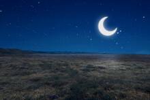 Meadow Field With Moonlight