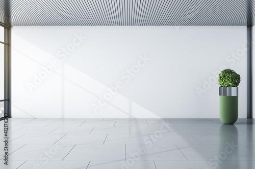 Foto Sunny modern empty room with blank light wall , grey floor and green shrub vase